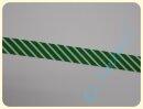 Schrägband Streifen grün